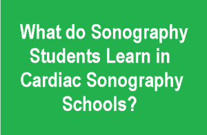 what to learn in cardiac sonography programs